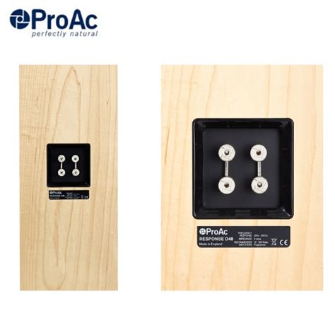 ProAc Response D48 and D48R Speakers from Vickers HiFi